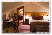 Sleeping in the Wilderness / A luxury 5 star setting for sleep filled nights. / by Clayoquot Wilderness Resort