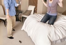 DIY Pest Control / Some do-it-yourself pest control techniques are worthwhile. Find out what you can do on your own to help control pests at home. / by Orkin Pest Control