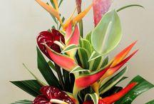 centros flor