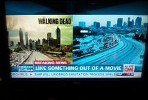 all things WALKING DEAD / Best show ev-ah!  #twd #walkers #dontgetbit #teamdaryl #teamrick #NOTteamlizzy
