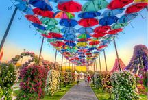 "8th of March ""Umbrellas"" ideas"