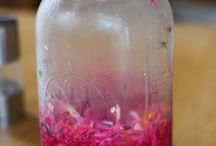 Lactofermentation / by Punk Domestics