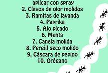 Hormiguicida
