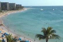 See Hawaii Live Webcam