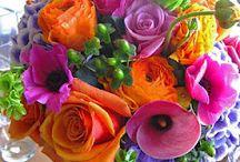 Flower Shop / by Donna Rollman