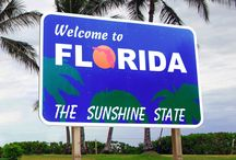 Florida / Pictures of 6 FL cities: Port St. Lucie, St. Petersburg, Jacksonville, Orlando, Tampa, & Tallahassee / by Nikki Gi