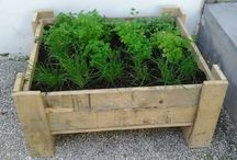 containers for plants and herbs