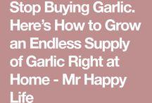 Easy food crops