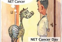 "Netty the NET Cancer zebra / ""Netty"" the zebra, the international symbol of NET Cancer."