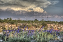 MY hdr Photography