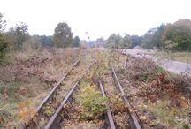 Tory kolejowe w Szamocinie (2013). / Pozostałości po linii kolejowej nr 378 w Szamocinie. Tory zostały usunięte jesienią 2013, budynek dworca użytkowany w innych celach