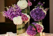 Май пурпур