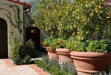 Pots in the garden / Using planter pots in different ways in the garden