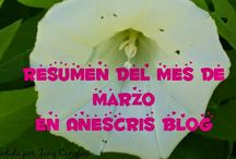 Anescris blog