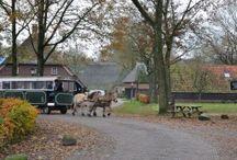 Wandelen Westerbork-Orvelte-Westerbork 12 km Drenthe / Rondwandeling Westerbork-Orvelte 12 km. Museumdorp Orvelte is zeker een bezoek waard.