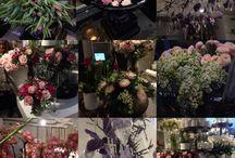 Blomsterbutikker i Oslo / Bilder fra Onsdag 27. Januar