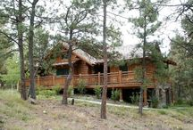 Dream Home / by Hank Harwell