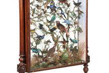 Utipia: Aviary
