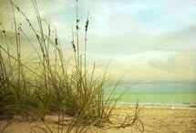 Just Beachy / All things Beachy  / by Jennifer Adair