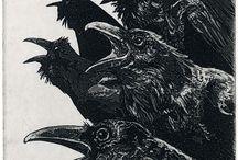 Raven ..