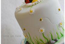 Finley's Cake