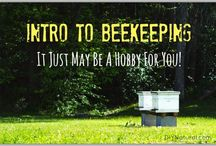 Bee Keeping / by Michelle Wilcox