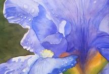 ART : Aquarelle -3-