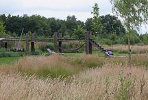 Natuurtuin / Harry Esselink Hoveniers heeft deze grote tuin omgetoverd tot een prachtige natuurtuin #tuin #tuinen #natuurtuin #tuininspiratie #hovenier #hoveniers