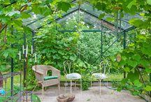 Mina Drömträdgårdar
