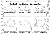 Ocean - Classroom Theme / Posters, alphabet, syllables, word wall headers, ocean floor, bingo, certificates, awards, number puzzles, counting, skip counting, cardinal directions, anchor charts