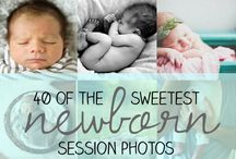 Newborn Photography / by Jen Brommer