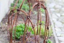 Garden: Plant stakes and supports / Garden Plant supports