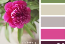 Color Palettes I Love / by Audrey Rothbacher