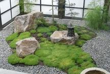 Mini & Macro Green