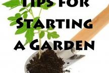 Gardening tips / by Jessica Jorge-Johnson