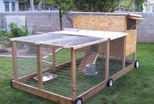 Chook pens ideas