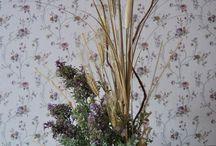 Flores secas / Flores secas