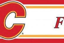 NHL Hockey Teams Accent Decors