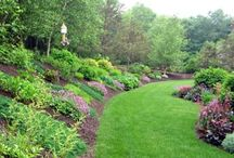landscaping on hill