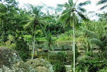Pura Gunung Kawi -グヌンカウィ寺院- / #グヌンカウィ #バリ島 #遺跡