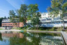 Hotel u Máchova jezera / Poloha hotelu přímo na břehu Máchova jezera vybízí k romantickým pobytům, k dobrodružné rodinné dovolené s dětmi, k teambuildingovým firemním akcím a školením, jakož i ke svatbám a rodinným oslavám. http://www.hotelport.cz/. tel:  +(420) 487 809 711. hotel@hotelport.cz.