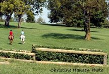 Masterson Equestrian Trust / This is our beloved Masterson Station Park. We invite you to explore the park and join us as we work to protect it for the enjoyment of all.