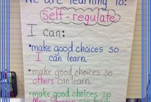 self regulation