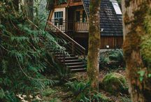 Casa din pădure