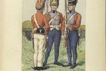 Danish Army Napoleonic Wars