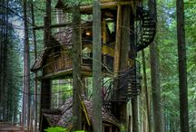 Tree houses! / Before I die I wish I will have my own treehouse!