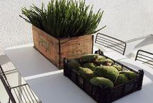Outdoor & garden
