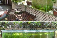 Garden - Planted Aquariums
