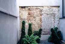 Courtyards / by Surroundings