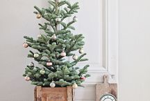christmas / Get in the festive spirit with plenty of Christmas inspiration. There are Christmas decorating ideas, wrapping and gift inspiration, Christmas baking and sweet treats, and lots of festive cheer.